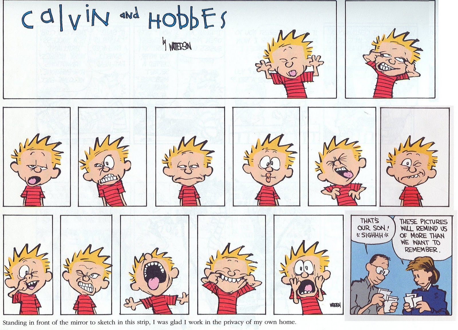 Calvin and Hobbes faces
